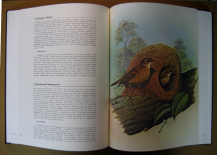 /data/Books/AVES DO BRASIL - Birds of Brazil.jpg
