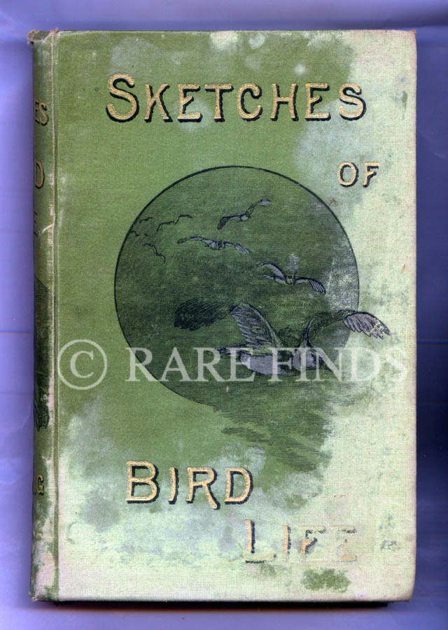 /data/Books/SKETCHES OF BIRD LIFE FROM TWENTY YEARS OBSERVATION OF THEIR HAUNTS AND HABITS.jpg